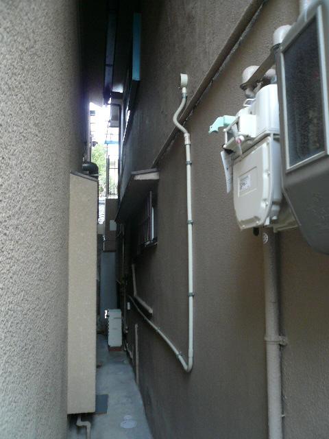 P1000980.jpg
